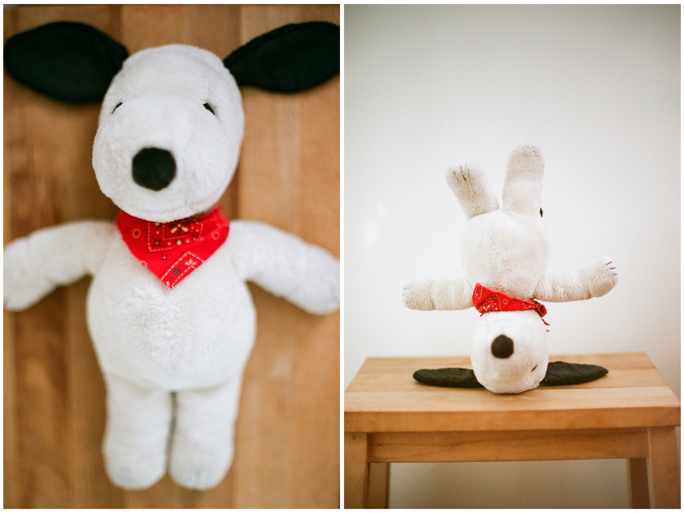 snoopy diptych
