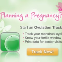 ovulation ad graphic design