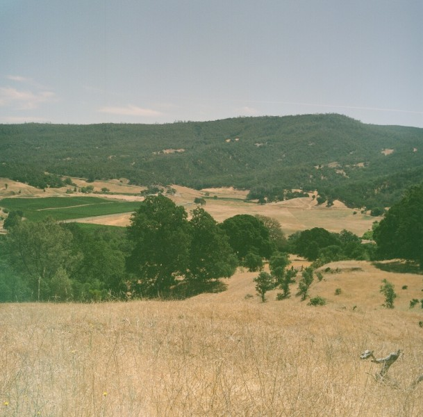 Pope Valley view